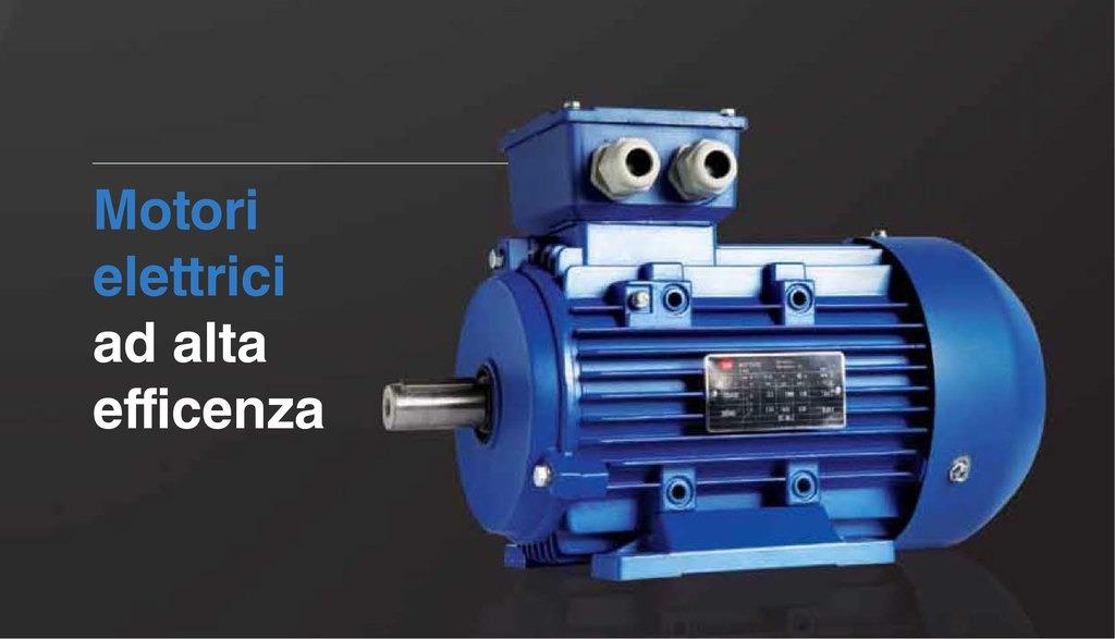 Motori elettrici ad alta efficienza
